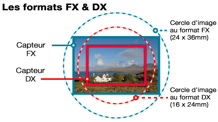 FX DX difference